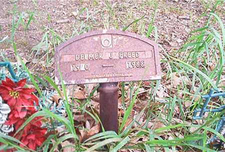 FREED, DELMER J. - Columbiana County, Ohio | DELMER J. FREED - Ohio Gravestone Photos