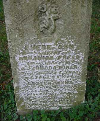 FREED, PHEBE ANN - Columbiana County, Ohio | PHEBE ANN FREED - Ohio Gravestone Photos
