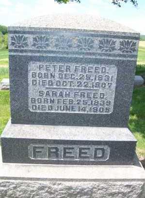 BROWN FREED, SARAH - Columbiana County, Ohio | SARAH BROWN FREED - Ohio Gravestone Photos