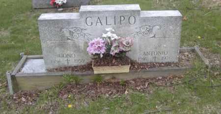 GALIPO, CONO - Columbiana County, Ohio | CONO GALIPO - Ohio Gravestone Photos