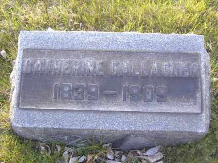GALLAGHER, CATHERINE - Columbiana County, Ohio | CATHERINE GALLAGHER - Ohio Gravestone Photos