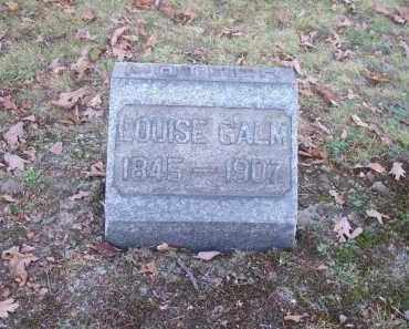 GALM, LOUISE - Columbiana County, Ohio | LOUISE GALM - Ohio Gravestone Photos
