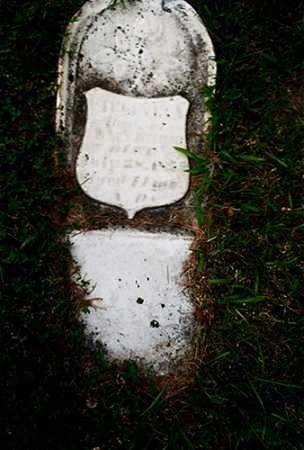 GRIMM, VIRGINIA - Columbiana County, Ohio | VIRGINIA GRIMM - Ohio Gravestone Photos
