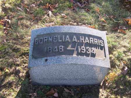 HARRIS, CORNELIA A. - Columbiana County, Ohio | CORNELIA A. HARRIS - Ohio Gravestone Photos