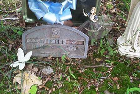 HART, MARSHA G. - Columbiana County, Ohio   MARSHA G. HART - Ohio Gravestone Photos