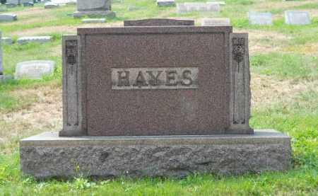 HAYES FAMILY, MEMORIAL - Columbiana County, Ohio | MEMORIAL HAYES FAMILY - Ohio Gravestone Photos