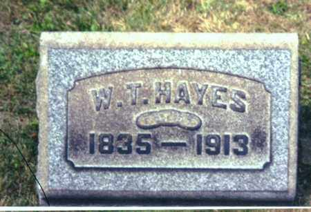 HAYES, WILLIAM THOMAS - Columbiana County, Ohio | WILLIAM THOMAS HAYES - Ohio Gravestone Photos