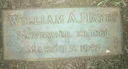 HAYES, WILLIAM ADAM - Columbiana County, Ohio | WILLIAM ADAM HAYES - Ohio Gravestone Photos