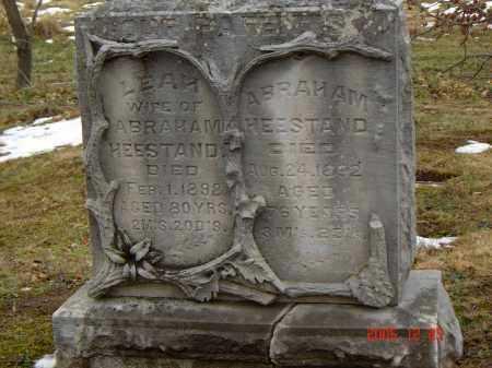 STOFFER HEESTAND, LEAH - Columbiana County, Ohio   LEAH STOFFER HEESTAND - Ohio Gravestone Photos