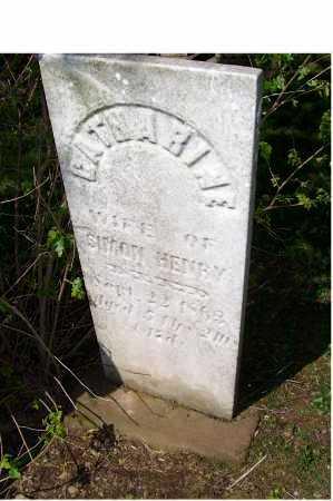 BARNHART HENRY, CATHERINE - Columbiana County, Ohio | CATHERINE BARNHART HENRY - Ohio Gravestone Photos