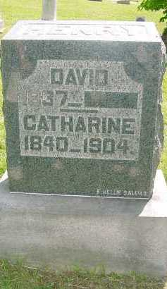 HENRY, CATHERINE - Columbiana County, Ohio | CATHERINE HENRY - Ohio Gravestone Photos