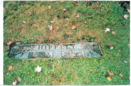 HIPPELY, ANGELINA - Columbiana County, Ohio | ANGELINA HIPPELY - Ohio Gravestone Photos
