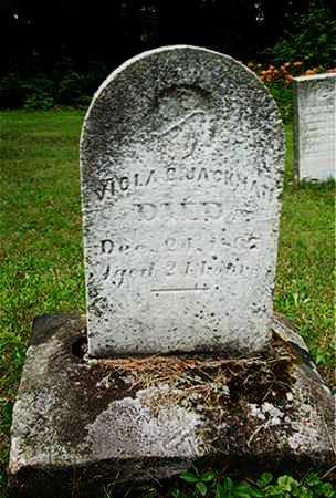JACKMAN, VIOLA B. - Columbiana County, Ohio | VIOLA B. JACKMAN - Ohio Gravestone Photos
