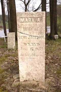 MCLAUGHLIN JACKSON, MARY ANN - Columbiana County, Ohio | MARY ANN MCLAUGHLIN JACKSON - Ohio Gravestone Photos