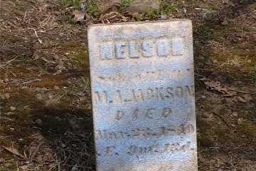 JACKSON, NELSON - Columbiana County, Ohio | NELSON JACKSON - Ohio Gravestone Photos