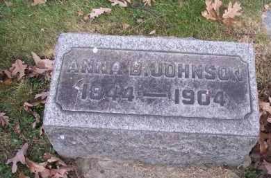 JOHNSON, ANNA B. - Columbiana County, Ohio | ANNA B. JOHNSON - Ohio Gravestone Photos