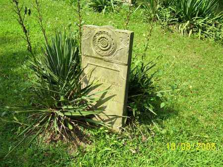JOLLEY, ELIZABETH - Columbiana County, Ohio | ELIZABETH JOLLEY - Ohio Gravestone Photos