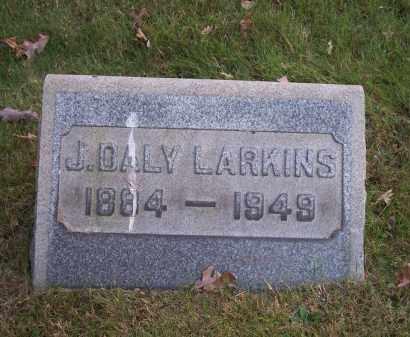 LARKINS, J. DALY - Columbiana County, Ohio | J. DALY LARKINS - Ohio Gravestone Photos