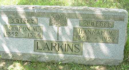 LARKINS, HANNAH M - Columbiana County, Ohio | HANNAH M LARKINS - Ohio Gravestone Photos