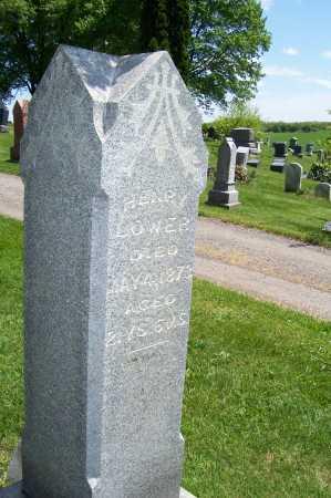 LOWER, HENRY - Columbiana County, Ohio | HENRY LOWER - Ohio Gravestone Photos