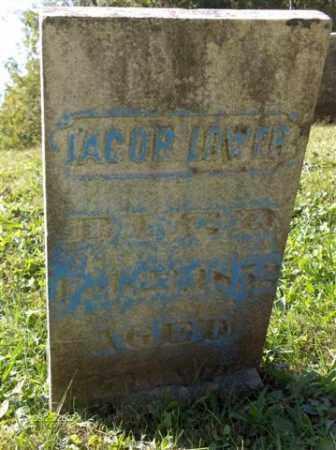 LOWER, JACOB - Columbiana County, Ohio | JACOB LOWER - Ohio Gravestone Photos