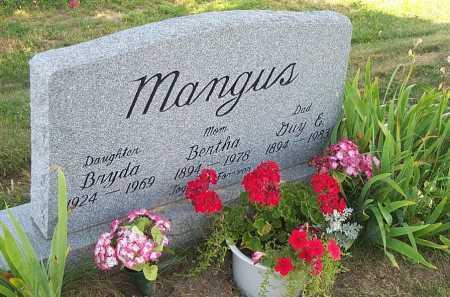 MANGUS, GUY E - Columbiana County, Ohio | GUY E MANGUS - Ohio Gravestone Photos