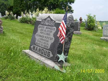 MANGUS, JACOB - Columbiana County, Ohio | JACOB MANGUS - Ohio Gravestone Photos
