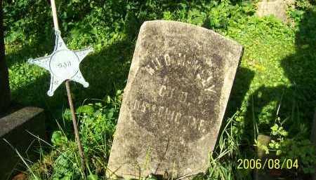 MCNELY, MILO - Columbiana County, Ohio | MILO MCNELY - Ohio Gravestone Photos