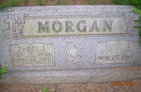 MORGAN, FRED J - Columbiana County, Ohio | FRED J MORGAN - Ohio Gravestone Photos