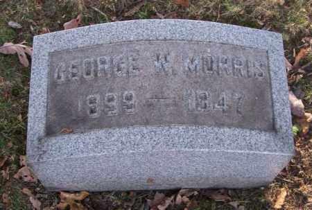 MORRIS, GEORGE W. - Columbiana County, Ohio   GEORGE W. MORRIS - Ohio Gravestone Photos