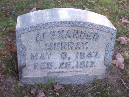 MURRAY, ALEXANDER - Columbiana County, Ohio | ALEXANDER MURRAY - Ohio Gravestone Photos