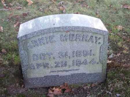 MURRAY, ANNIE - Columbiana County, Ohio | ANNIE MURRAY - Ohio Gravestone Photos