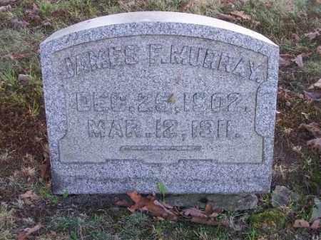 MURRAY, JAMES F. - Columbiana County, Ohio | JAMES F. MURRAY - Ohio Gravestone Photos