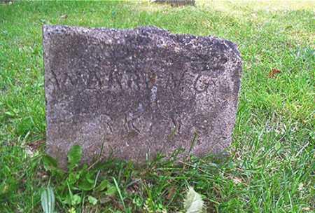 PERKINS, WARREN G. - Columbiana County, Ohio | WARREN G. PERKINS - Ohio Gravestone Photos