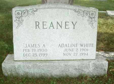 WHITE REANEY, ADALINE - Columbiana County, Ohio | ADALINE WHITE REANEY - Ohio Gravestone Photos