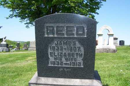 REED, ELIZABETH - Columbiana County, Ohio | ELIZABETH REED - Ohio Gravestone Photos