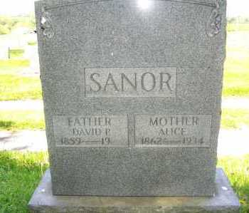 SANOR, ALICE - Columbiana County, Ohio | ALICE SANOR - Ohio Gravestone Photos