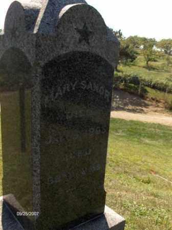 SANOR, MARY - Columbiana County, Ohio | MARY SANOR - Ohio Gravestone Photos
