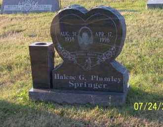 PLUMLEY SPRINGER, HALENE G. - Columbiana County, Ohio   HALENE G. PLUMLEY SPRINGER - Ohio Gravestone Photos