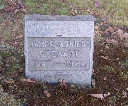 STEWART, JAMES SCROGGS - Columbiana County, Ohio | JAMES SCROGGS STEWART - Ohio Gravestone Photos