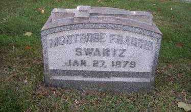 SWARTZ, MONTROSE FRANCIS - Columbiana County, Ohio | MONTROSE FRANCIS SWARTZ - Ohio Gravestone Photos