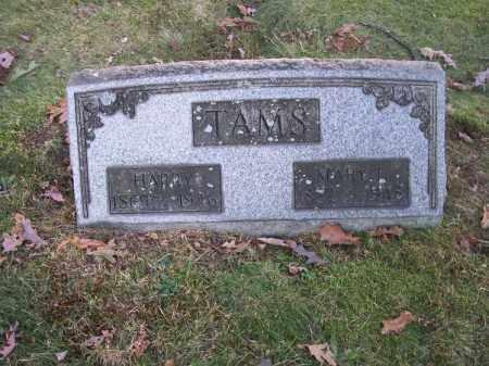 TAMS, MARY L. - Columbiana County, Ohio | MARY L. TAMS - Ohio Gravestone Photos