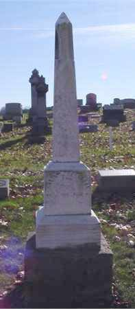 VANFOSSAN, WILLIAM - Columbiana County, Ohio | WILLIAM VANFOSSAN - Ohio Gravestone Photos