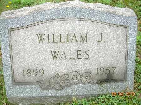 WALES, WILLIAM J - Columbiana County, Ohio | WILLIAM J WALES - Ohio Gravestone Photos