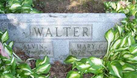 WALTER, ALVIN - Columbiana County, Ohio | ALVIN WALTER - Ohio Gravestone Photos