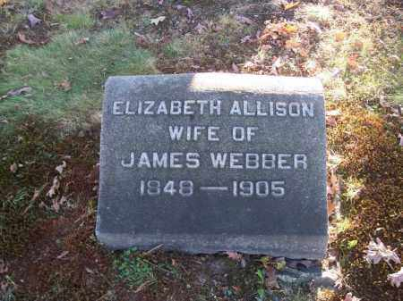 WEBBER, ELIZABETH ALLISON - Columbiana County, Ohio | ELIZABETH ALLISON WEBBER - Ohio Gravestone Photos