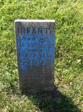 WHITELEATHER, INFANT - Columbiana County, Ohio   INFANT WHITELEATHER - Ohio Gravestone Photos