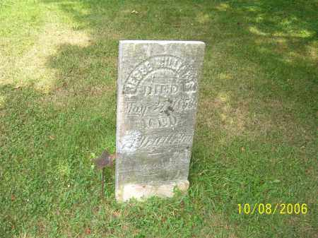 WILLIAMS, JESSE - Columbiana County, Ohio   JESSE WILLIAMS - Ohio Gravestone Photos