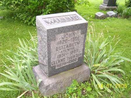 KELLY WILLIS, ELIZABETH - Columbiana County, Ohio | ELIZABETH KELLY WILLIS - Ohio Gravestone Photos