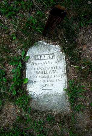WOLLAM, MARY - Columbiana County, Ohio | MARY WOLLAM - Ohio Gravestone Photos